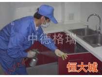 家庭污染专项治理 (2)